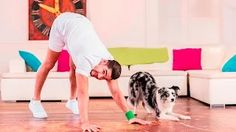 Petsercise with Louis Smith: The First Man and Dog Fitness Video - YouTube