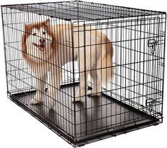 Results 1 - 24 of 146 - Petco Classic Dog Crates. You & Me Folding Dog Crate. OxGord's dog crate is available in 6 sizes – smal Cheap Dog Cages, Dog Cages For Sale, Large Dog Cage, Large Dogs, Puppy Supplies, Online Pet Supplies, Steel Dog Crate, Wire Dog Crates