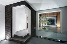 windows and open garden at the 4 Views House by AR Design Studio #architecture