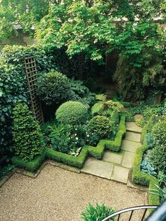 Zig Zag Hedge Divides Garden Border From Walkway. Boxwood is shaped to form a zig zag design bordering the walkway and steps leading from one terrace to another. The linear shapes help define the space and bring an artful interest to this garden.