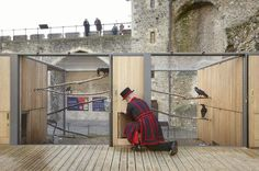 New Home For Tower Of London Ravens Wins Architecture Award | Londonist