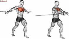 Treino ABCD para a hipertrofia, como organizar o… Best Chest Workout, Chest Workouts, Easy Workouts, Bodybuilding For Beginners, Fitness Bodybuilding, Fitness Tips For Men, Mens Fitness, Cable Workout, Estilo Fitness
