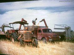 The Combine Harvester.