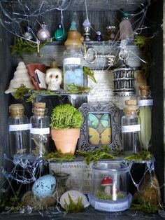 Fairy Apothecary Diorama Shadowbox- use hot glue for webs and flora