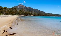 In Love with Wineglass Bay and Hazards Beach Tasmania