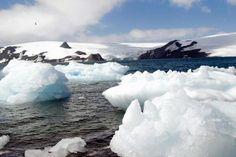 Pregopontocom Tudo: Antártida terá maior reserva de conservação marinha do planeta...