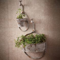 Water Spout Planters #twoscompany #veranda #garden #homedecor #homeaccents