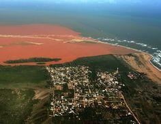 http://epoca.globo.com/colunas-e-blogs/blog-do-planeta/noticia/2016/01/governo-e-samarco-deixam-lama-chegar-no-mais-importante-parque-marinho-do-brasil.html