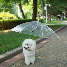 LESYPET Pet Umbrella, Dog Umbrella with Leash Folding Assembled Puppy Doggy Umbrella (Transparent) Dog Umbrella, Transparent Umbrella, Dog Coats, Rain Coats, Outdoor Dog, Medium Dogs, Dog Houses, Dog Supplies, Dog Accessories