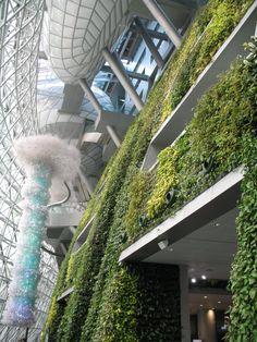 Het indrukwekkende nieuwe stadhuis (uit 2012) is van binnen nog mooier dan van buiten. Er zijn met echte planten begroeide muren en grote glazen constructies. Ook staan er indrukwekkende kunstwerken in de hal. Een juweel als je van moderne architectuur houdt. Ik zou er wel in willen werken.