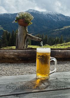 Erfrischende Quelle bei der Stegmoosalm Beer, Mugs, Tableware, Photography, Water, Ale, Dinnerware, Tumbler, Dishes