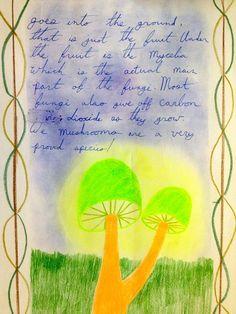 Main Lesson Books (5th) - Archived SBS Grade 5 Like and Repin. Thx Noelito Flow. http://www.instagram.com/noelitoflow