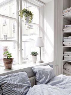 Minimalist white bedroom with plants