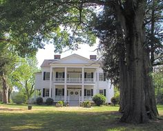 I love the old plantation look. One day I will have an old farmhouse to fix up :)
