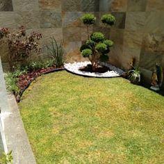 Palmera rubelina con duranta y piedra de rio jardines for Barda de madera para jardin