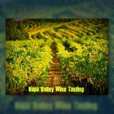 Napa Valley Tasting Guide