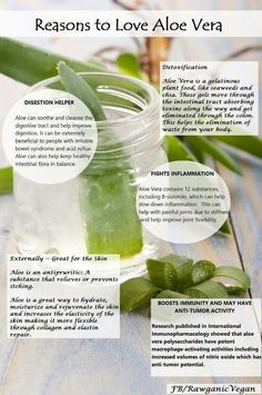 Reasons to Love Aloe Vera www.juicecrafters.com #mastercleanse #organic