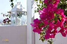 Laid back mornings on the balcony of your room in Mitos Suites, in Naxos, enjoying the view of the Aegean and the playful colours of the bougainvilleas, claiming their place outside your window. by aqua_vista_hotels. Bougainvillea, Beautiful Hotels, Greece Travel, Aqua, Colours, Architecture, Mornings, Balcony, Window