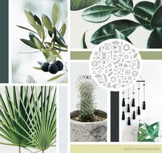 P▲STEL FEATHER STUDIO: moodboard