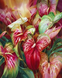 Watercolor painting by Darryl Trott - anthurium tropical flowers floral art Tropical Art, Tropical Flowers, Exotic Flowers, Purple Flowers, Arte Floral, Flower Canvas, Flower Art, Cactus Flower, Watercolor Flowers