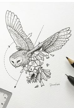 Kerby Rosanes | geometric beasts : owl