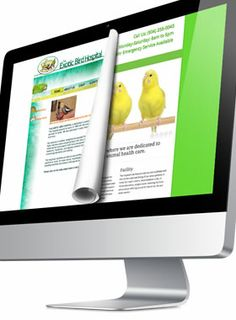 Mad Men Marketing - Website Redesign ~ Exotic Bird Hospital