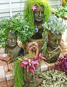 Garden art bust planters with succulents as hair Cacti And Succulents, Planting Succulents, Planting Flowers, Succulent Ideas, Succulent Containers, Container Flowers, Flowers Garden, Container Plants, Potted Plants