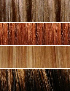 Hair Colour Chart Aveda Brown Dark Hairs