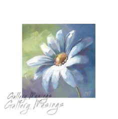 For Sale: Daisy Flower Oil Painting White Daisy 5 x 5 by GalleryMusings