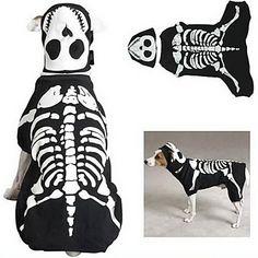 pethingtm [xmassale] tuta stile cani nottilucenti osso con benda sull'occhio per i cani (nero, XS-XL) – EUR € 12.34
