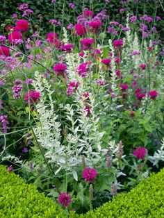 Boxwood Hedge and Herbs Create Informal Formality