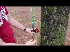 Tree Climbing Tutorial - YouTube. I think it would be so cool to get into this! I have not climbed a tree since I was a kid!!!!