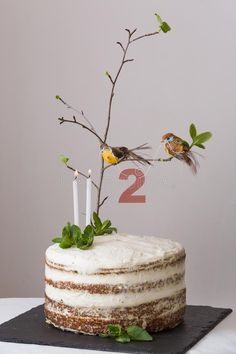 Delicious Birthday Cake With Branch Of A Tree, Birds, Candles And Number 2 As Decoration. Beautiful White Carrot Cake Stock Photo - Image of celebrating, cute: 165678134 Pretty Cakes, Cute Cakes, Beautiful Cakes, Amazing Cakes, Bird Cakes, Cupcake Cakes, Bird Birthday Parties, My Birthday Cake, Dessert Original
