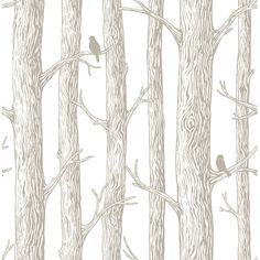 "Found it at Wayfair - 18' x 20.5"" the Forest Peel and Stick Wallpaper"