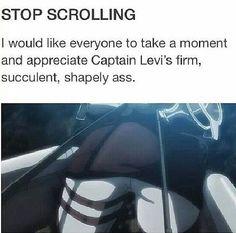"Shingeki no Kyojin » Humor   ""Take a moment and appreciate Captain Levi's firm, succulent, shapely ass""   #levi"