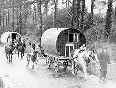 Irish Gypsy Wagons.