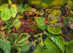 http://1.bp.blogspot.com/-4no8qeSPUn8/To3xVwllPqI/AAAAAAAAACM/LSwv-24amyk/s1600/blackberry.jpg