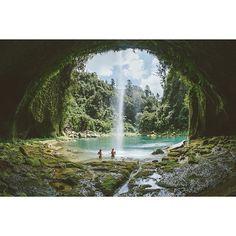 "Bill ✔️ ""The Lost World"" Omanawa Falls, Kaimai, Tauranga New Zealand . Image by Rambo Estrada. Bill Gibson-Patmore. (curation & caption: @BillGP). Bill✔️"