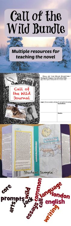 The Call of the Wild is an excellent book that has many areas that can be focused on both during and after reading. Provided for you here are three in-depth activities to use while teaching The Call of the Wild in your classroom - a journal unit to use while reading the novel, and two activities to use once students have finished the novel.