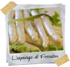 non solo a pesce a #Grado... i pregiati asparagi bianchi di Fossalon