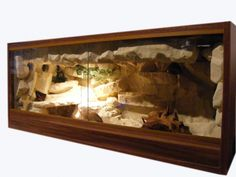 for bearded dragon terrarium viewing gallery for bearded dragon ...