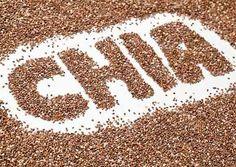 ¿Sabes que es la Chía? ¿Conoces sus beneficios? En este artículo te hablamos de esta semilla tan saludable y también te aportamos recetas para poder comerla