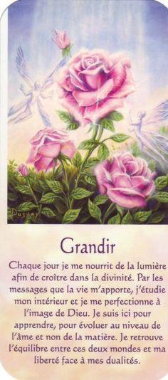 grandir + texte - Photo de Mario Dugay - Soleil de Lumière