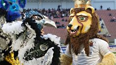 """""""Hibernians' peacock mascot meets Valletta's lion"""" -- This is the Malta Football (soccer) Association, but I couldn't resist pinning this most unusual peacock mascot."""
