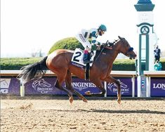 Gamine proves untouchable in BC Filly & Mare Sprint Race Horses, Horse Racing, Bob Baffert, Breeders Cup Classic, Thoroughbred, World Championship, Animals, Animaux, Animales