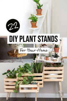 Easy and creative wooden DIY plant stand ideas for outdoor or indoors. These are perfect for the patio and are really simple and easy to build for any skill level. Great beginner project ideas! #anikasdiylife #woodworking #diyplantstand Diy Furniture Plans Wood Projects, Woodworking Furniture Plans, Scrap Wood Projects, Diy Woodworking, Diy Plant Stand, Wood Projects For Beginners, Wood Working For Beginners, Woodworking Projects That Sell, Beginner Woodworking Projects