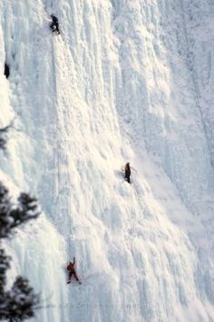 Picture of ice climbers scaling a frozen waterfall in Alberta, Canada
