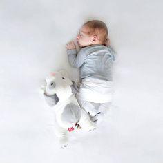 Zazu Σκυλάκι Dex Με Λευκούς Ήχους