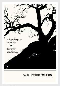 Adopt the secret of nature