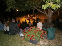 """Feurige Klänge beim Gitarrenkonzert der Gruppe """"Con Fuego"""" in der Arena der Gartenbauschule Langenlois."""